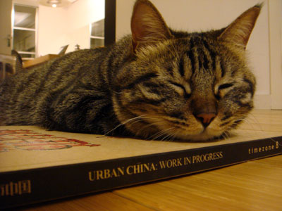 urban-china